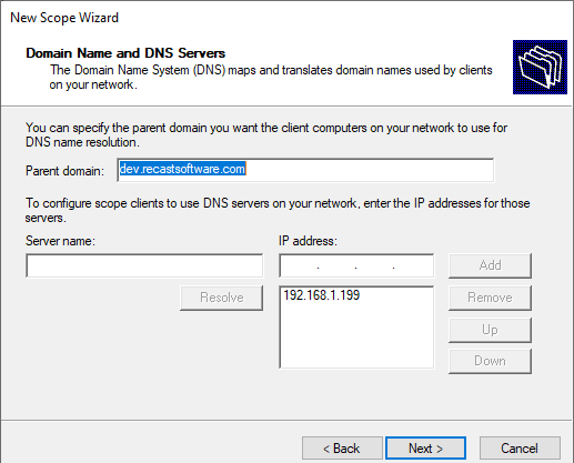 Domain Name and DNS Server