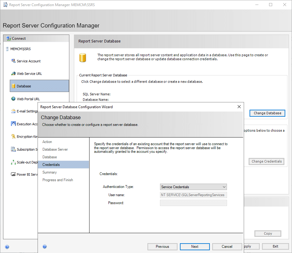 Report Server Configuration Manager Database